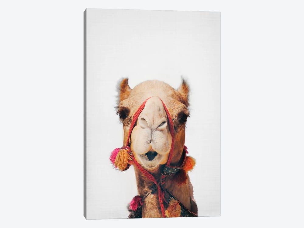 Camel by Sisi & Seb 1-piece Canvas Print