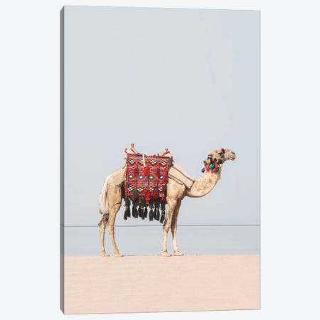Camel in the Desert Canvas Print #SSE57} by Sisi & Seb Canvas Art Print
