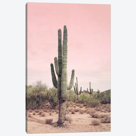 Desert Cactus Blush Canvas Print #SSE60} by Sisi & Seb Canvas Print