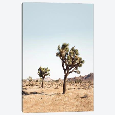 Desert Tree Canvas Print #SSE62} by Sisi & Seb Art Print