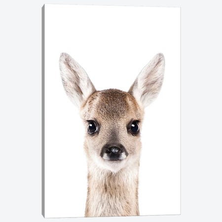 Fawn Canvas Print #SSE67} by Sisi & Seb Canvas Artwork