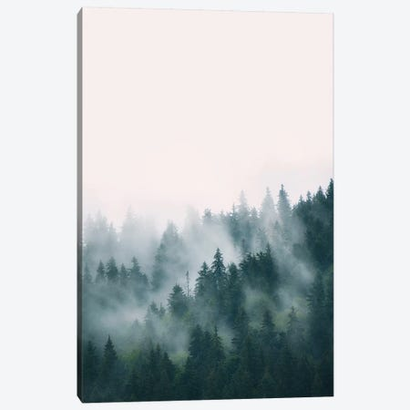 Forest Canvas Print #SSE74} by Sisi & Seb Canvas Print