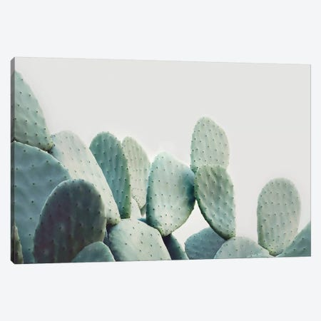 Green Pastal Cactus Canvas Print #SSE78} by Sisi & Seb Canvas Art