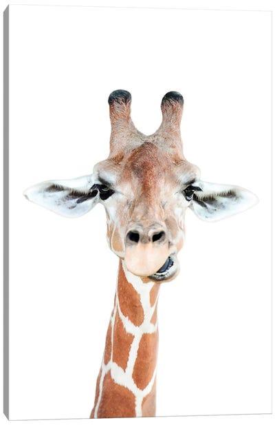 Happy Giraffe Canvas Art Print