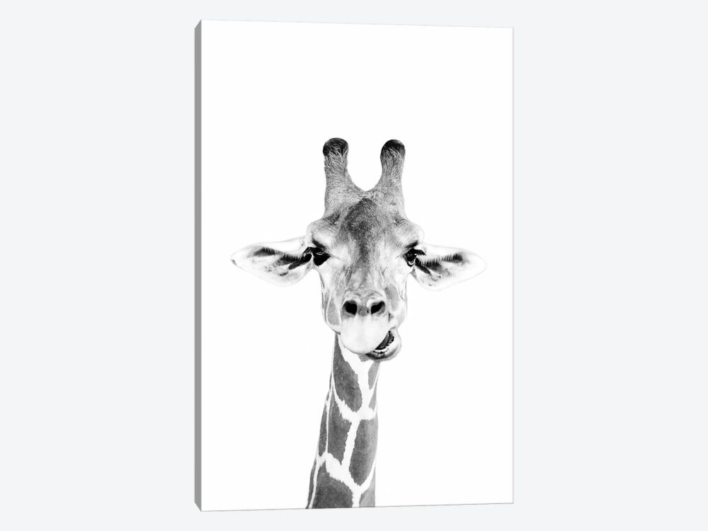 Happy Giraffe In Black & White by Sisi & Seb 1-piece Canvas Wall Art