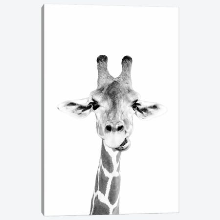 Happy Giraffe In Black & White Canvas Print #SSE84} by Sisi & Seb Canvas Artwork