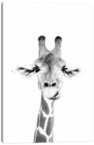 Happy Giraffe In Black & White Canvas Art Print