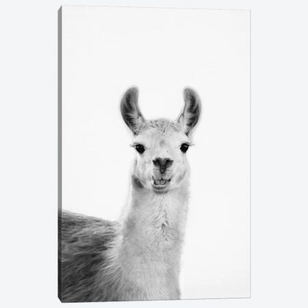 Happy Lama Canvas Print #SSE85} by Sisi & Seb Canvas Art