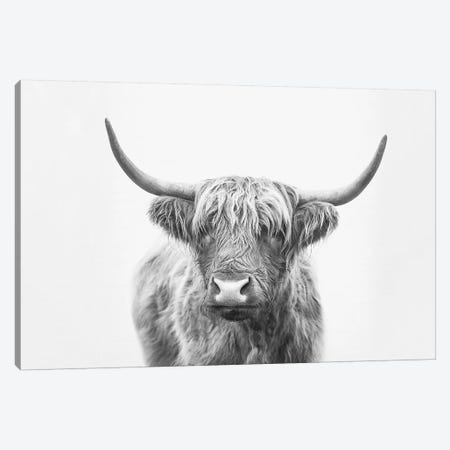 Highland Bull Canvas Print #SSE88} by Sisi & Seb Canvas Art Print