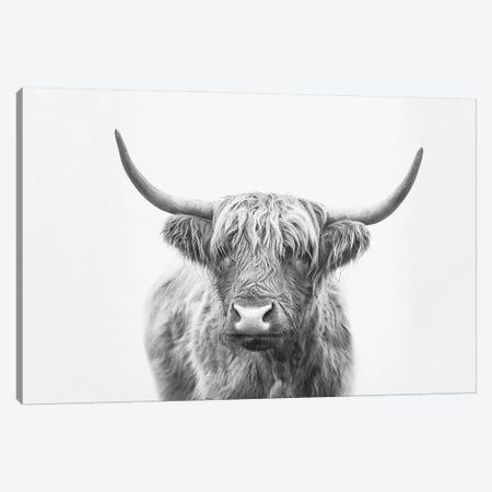 Highland Bull Canvas Print #SSE88} by Sisi & Seb Canvas Art Print