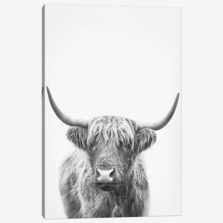 Highland Bull II Canvas Print #SSE89} by Sisi & Seb Art Print