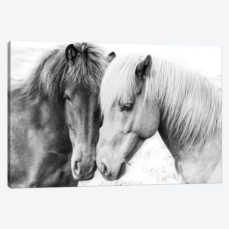 Horse Love Canvas Print #SSE92} by Sisi & Seb Canvas Art
