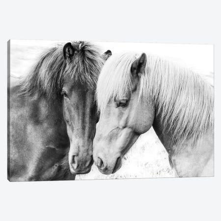Horse Love Canvas Print #SSE92} by Sisi & Seb Canvas Art