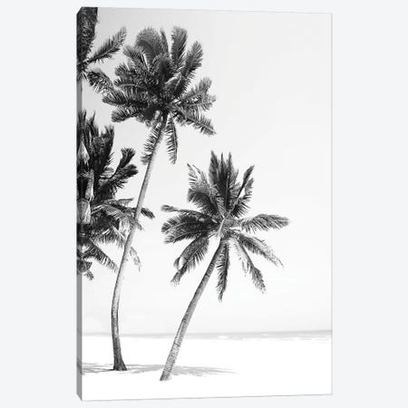 Island Canvas Print #SSE98} by Sisi & Seb Canvas Artwork