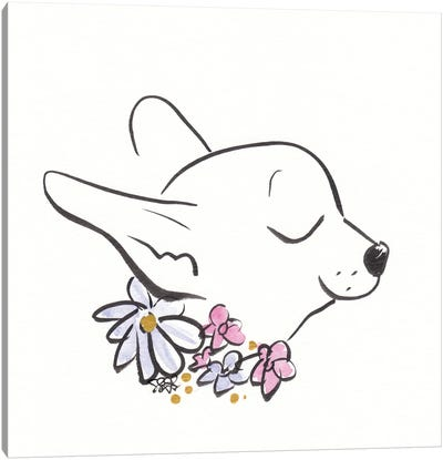 Chihuahua With Flower Collar Canvas Art Print