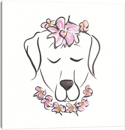 Labrador Zeus Petal Pie Canvas Art Print