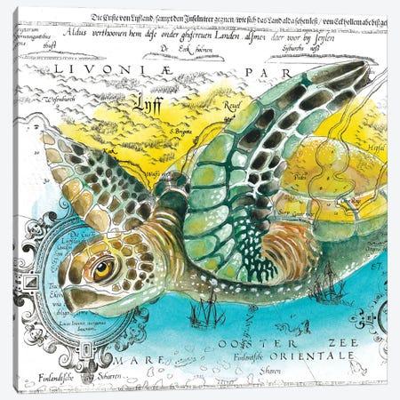 Sea Turtle Vintage Map Watercolor Canvas Print #SSI109} by Seven Sirens Studios Canvas Print