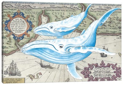 Blue Whales Old Map Canvas Art Print