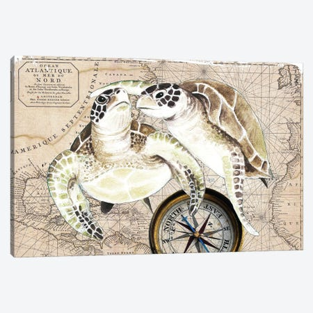 Sea Turtles Love Vintage Map Compass Canvas Print #SSI140} by Seven Sirens Studios Canvas Print