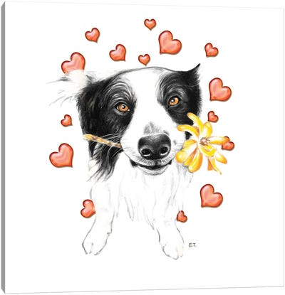 Border Collie And Hearts Canvas Art Print