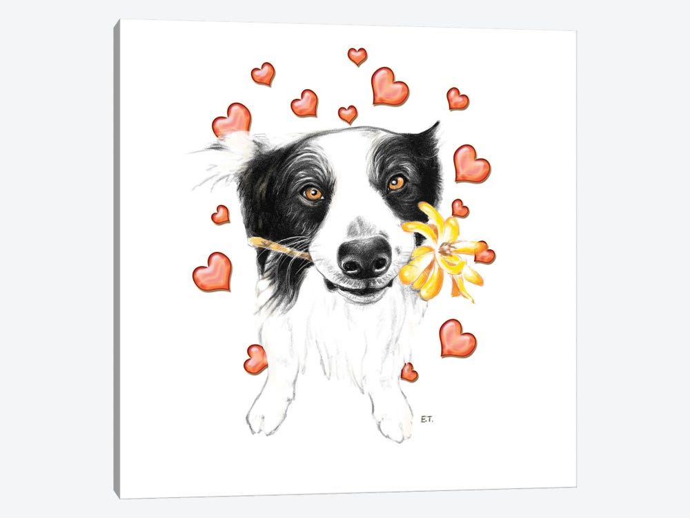 Border Collie And Hearts by Seven Sirens Studios 1-piece Canvas Print