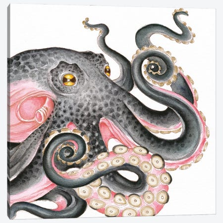 Grey Salmon Pink Octopus Watercolor Canvas Print #SSI161} by Seven Sirens Studios Canvas Art Print