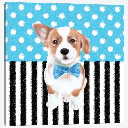 Corgi Blue Polka Dot Stripes Canvas Print #SSI19} by Seven Sirens Studios Canvas Art