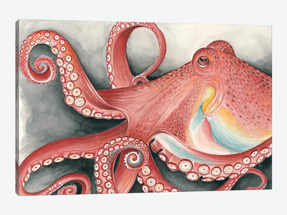 Giant Red Pacific Octopus Watercolor Art by Seven Sirens Studios 1-piece Canvas Art