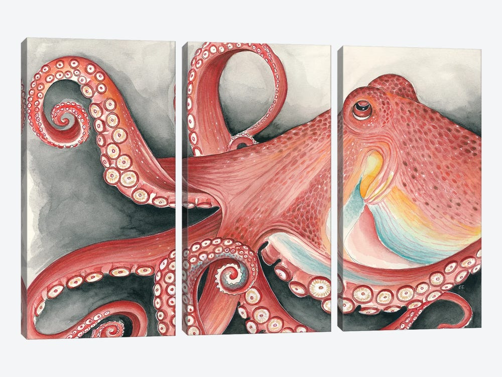 Giant Red Pacific Octopus Watercolor Art by Seven Sirens Studios 3-piece Canvas Artwork