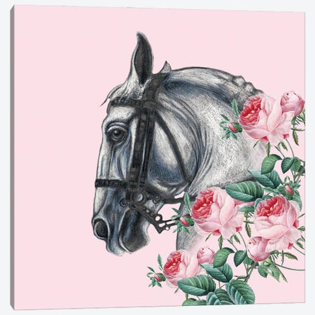 Horse And The Roses Pink Canvas Print #SSI37} by Seven Sirens Studios Art Print
