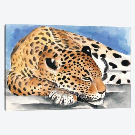Reclining Jaguar Watercolor Art Canvas Print #SSI42} by Seven Sirens Studios Canvas Print