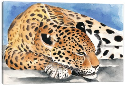 Reclining Jaguar Watercolor Art Canvas Art Print