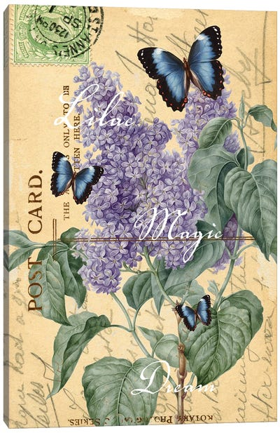 Lilac Butterfly Letter Chic Canvas Art Print
