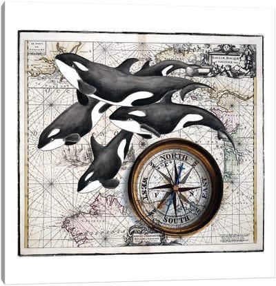 Orca Whale Pod Compass Vintage Map Canvas Art Print