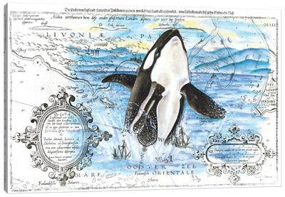 Breaching Orca Whale Vintage Map Blue Canvas Art Print