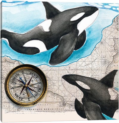 Two Orca Whales Compass Map Canvas Art Print