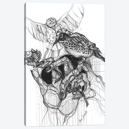 Black Bird And Graphics Canvas Print #SSR105} by Maria Susarenko Canvas Wall Art