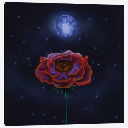 Rose Under Moonlight Canvas Print #SSZ43} by Stephanie Sanchez Canvas Art