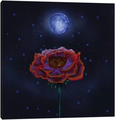 Rose Under Moonlight Canvas Art Print