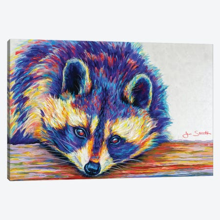 Raccoon Canvas Print #STA19} by Jen Starwalt Art Print