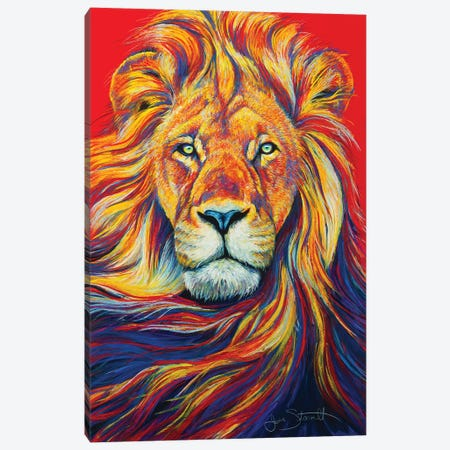 African Lion Canvas Print #STA1} by Jen Starwalt Canvas Print
