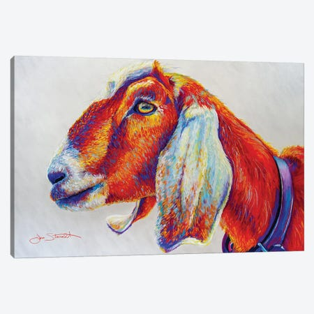 Sandberg Goat Canvas Print #STA27} by Jen Starwalt Canvas Art Print