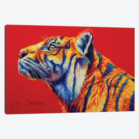 Sumatran Tiger Canvas Print #STA32} by Jen Starwalt Art Print