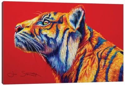 Sumatran Tiger Canvas Art Print