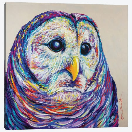 Barred Owl Canvas Print #STA3} by Jen Starwalt Canvas Art Print