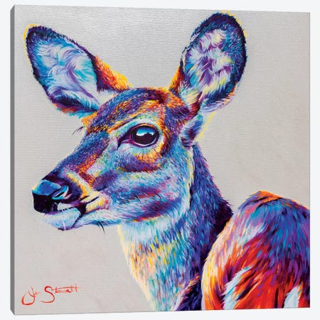 Gentle Spirit Canvas Print #STA7} by Jen Starwalt Canvas Art