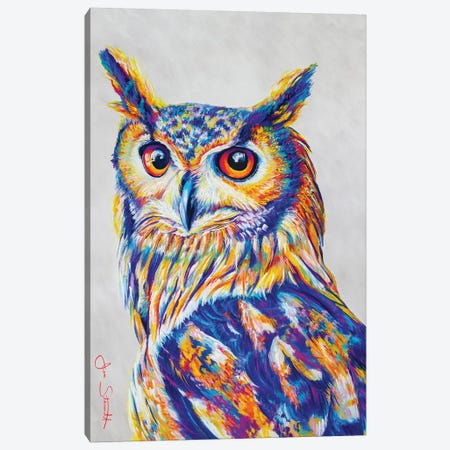 Great Horned Owl 3-Piece Canvas #STA9} by Jen Starwalt Canvas Print