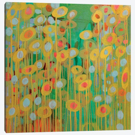 Sundrops I Canvas Print #STC71} by Stephanie Corfee Art Print