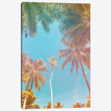 Palms in Paradise Canvas Print #STD131} by Seven Trees Design Canvas Print