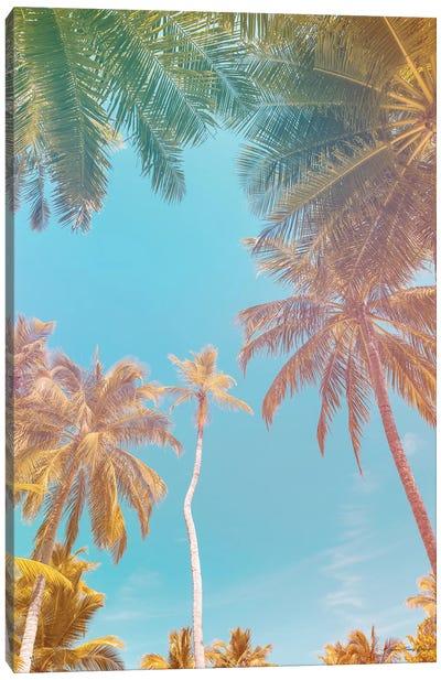 Palms in Paradise Canvas Art Print